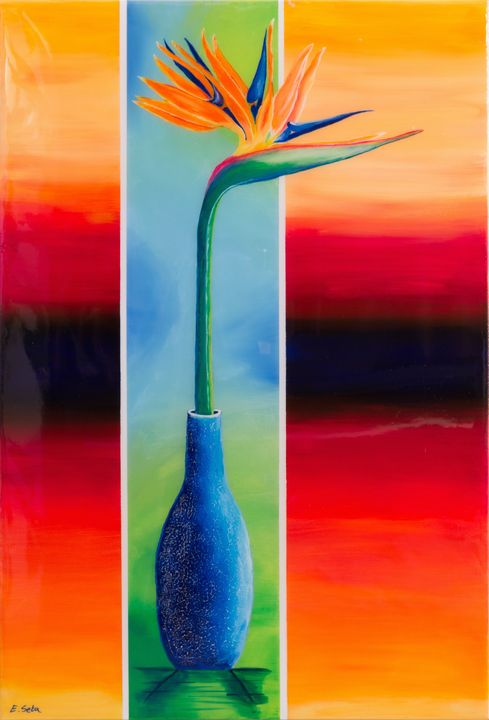 Bird of Paradise - Elizabeth Seta