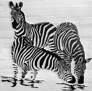 Zebras at Waterhole