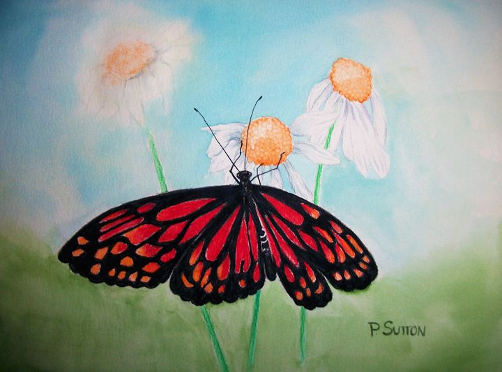 Red Butterfly - PamSutton
