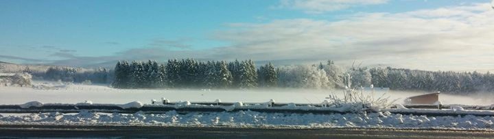 Winter in Leyden - Tim McLaughlin Jr