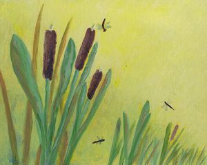 Cattails and dragonflies