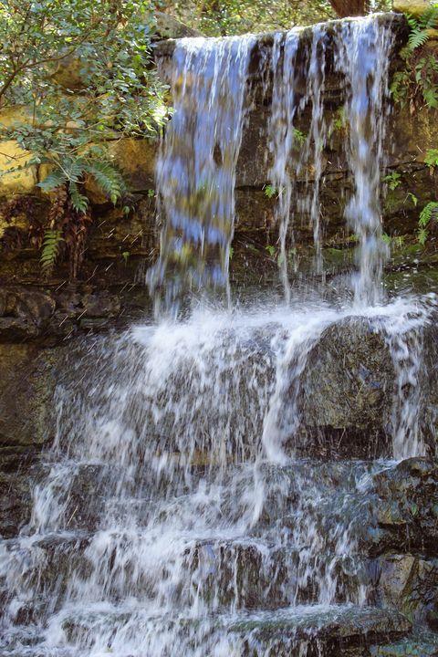 Botanical Falls - Lauren Paige