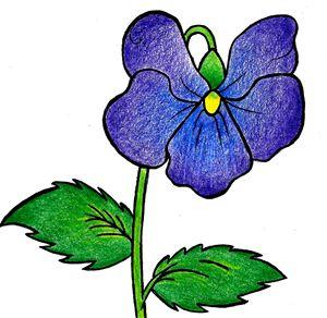 Violettes - Gab Carson