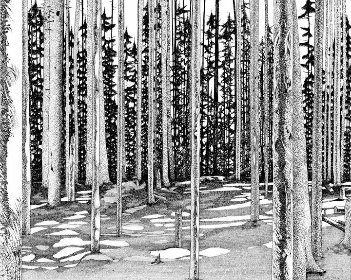 Trees - David E Feaman