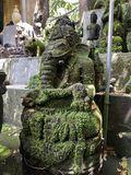 Ganesha Statue Special with alga