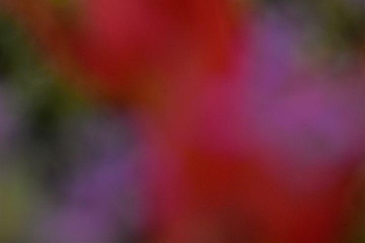 Floral Bokeh - PuzbieArts