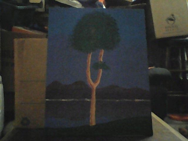 Lonely Tree - Ashleys Wonder Works