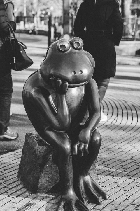 Frog Statue - Griffin Moran Photography