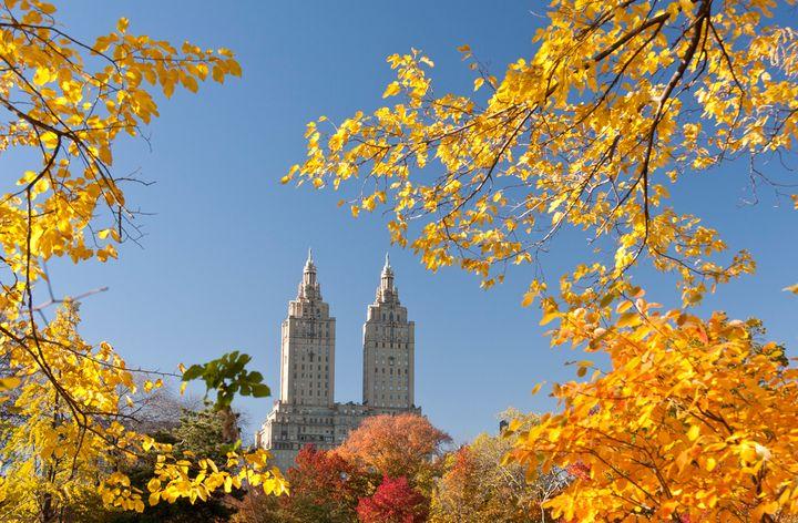 Central Park - Frédéric Henry