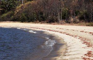 Shore at Jamestown Beach
