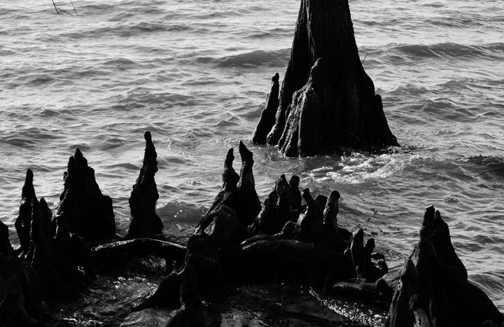 Eerie Grotto at the Beach - Angela Ronk 24k FX Design
