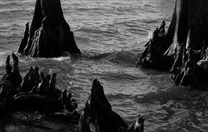 Eerie Grotto
