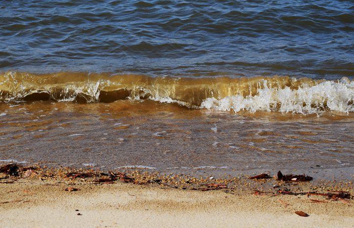 Rolling Waves at Jamestown Beach - Angela Ronk 24k FX Design