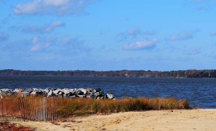 Sandy Shoreline - Angela Ronk 24k FX Design