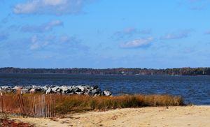 Sandy Shoreline