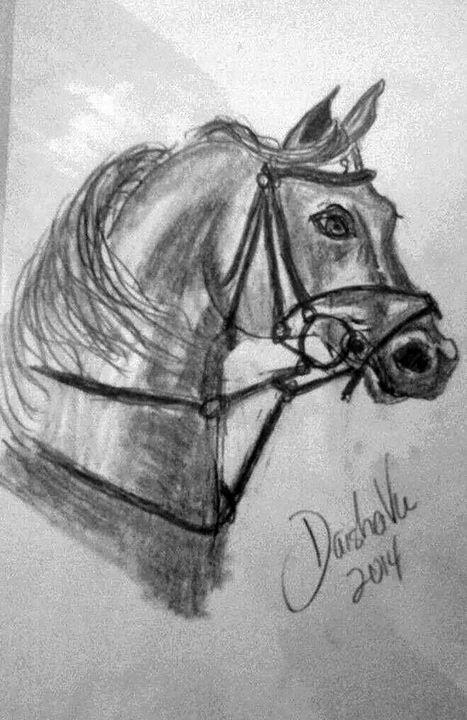 Arabian Horse - DaishaVu