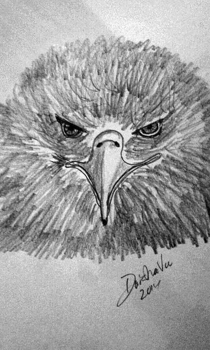 bird - DaishaVu