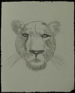 Friendly Lion - Dawn Byer