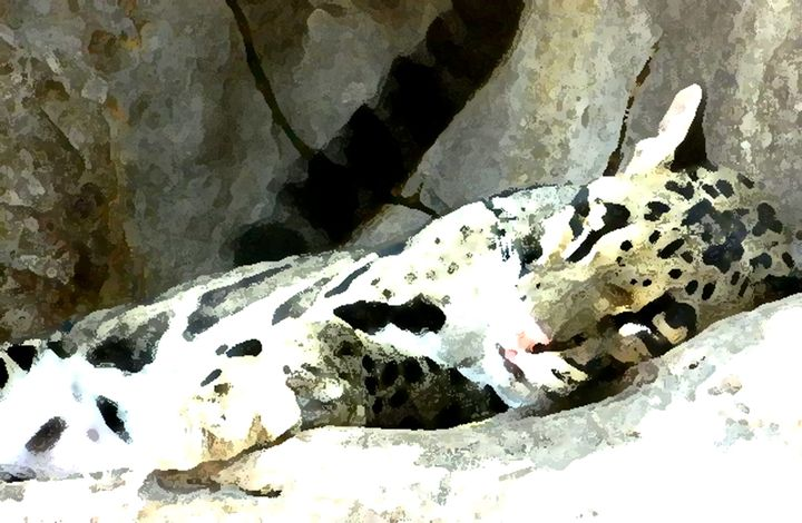 The Jaguar's Asleep - Your Heart Services  Dynisha Cole (c) 2014