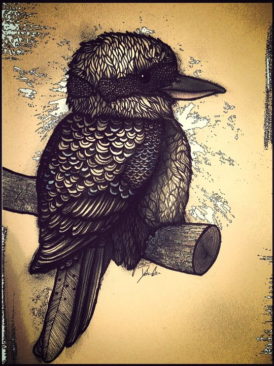 Kookaburra - Dustin James Gire