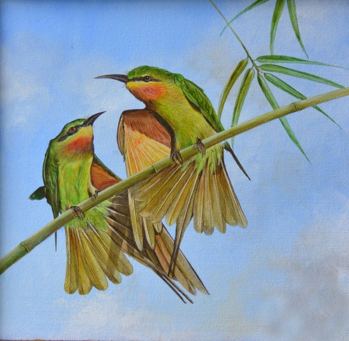 A Bee Eater's Tale - Aartzy - Let's Talk Expressions