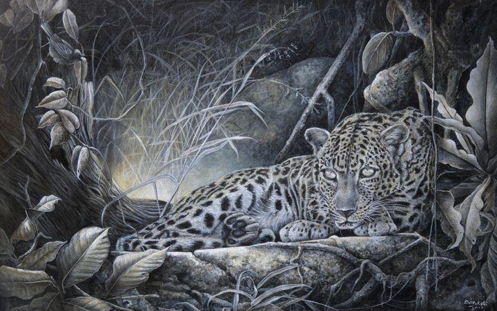 Grandeur of the Wild - Aartzy - Let's Talk Expressions