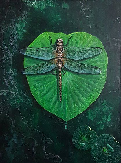 A Dragonfly's Tale - Aartzy - Let's Talk Expressions
