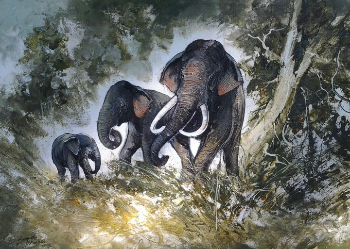 Elephants in the Wild - Aartzy - Let's Talk Expressions