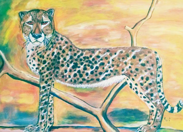 Cheetah - TAWENGWA MAGADA