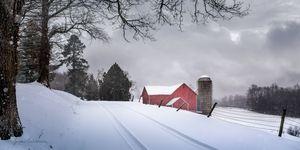Snow Swept Lane