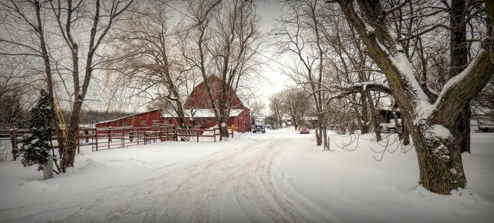 Winter On The Farm - Leslie Montgomery