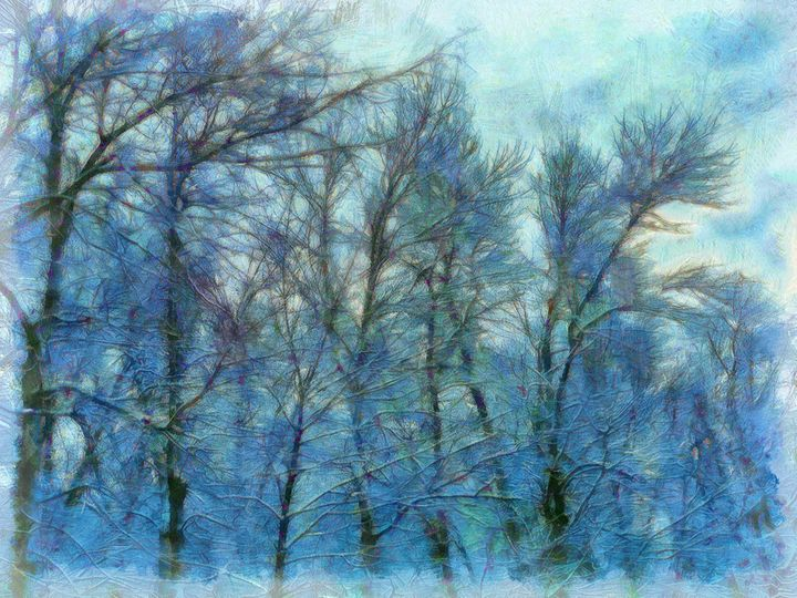 Winter Blue Forest - Leslie Montgomery