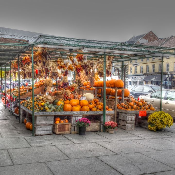 Byward Market Pumpkins - Leslie Montgomery