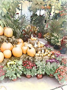 Fall Decorating At The Market - Leslie Montgomery