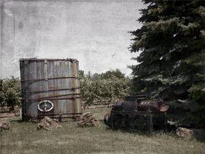 Wine Making - Vintage - Leslie Montgomery