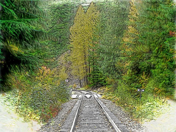 More Western Tracks - Leslie Montgomery