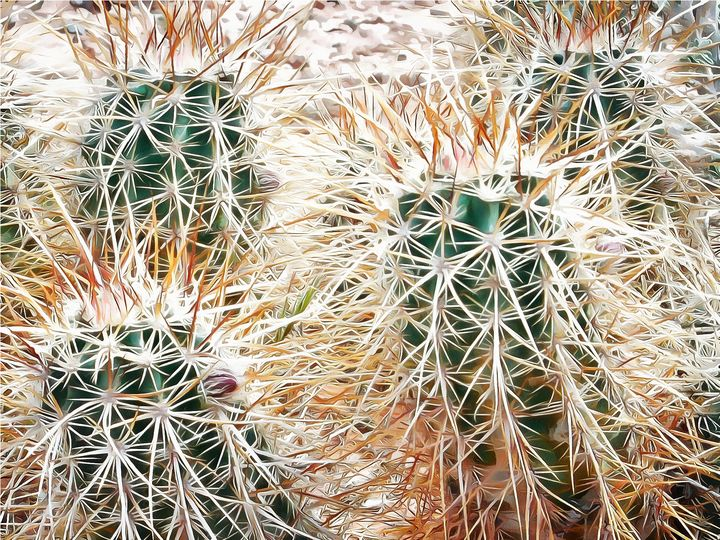 Prickly Protection - Leslie Montgomery
