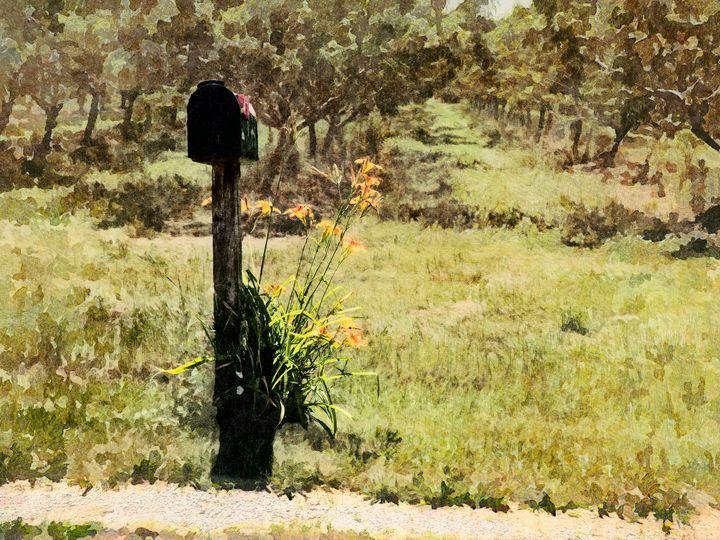 The Mailman Cometh - Leslie Montgomery