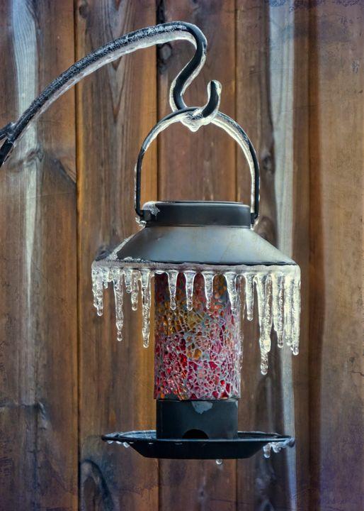 Winter Spectacular - Garden Lantern - Leslie Montgomery