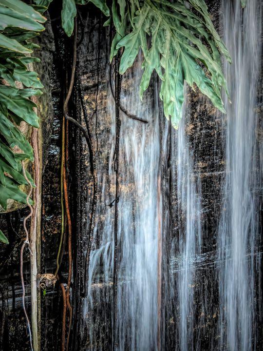 Tropical Falling Waters - Leslie Montgomery