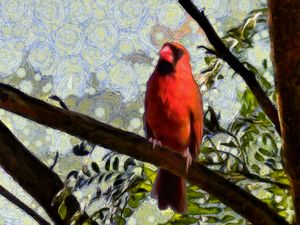 Cardinal Knowledge - Leslie Montgomery