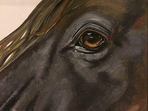 Eyes of Perception
