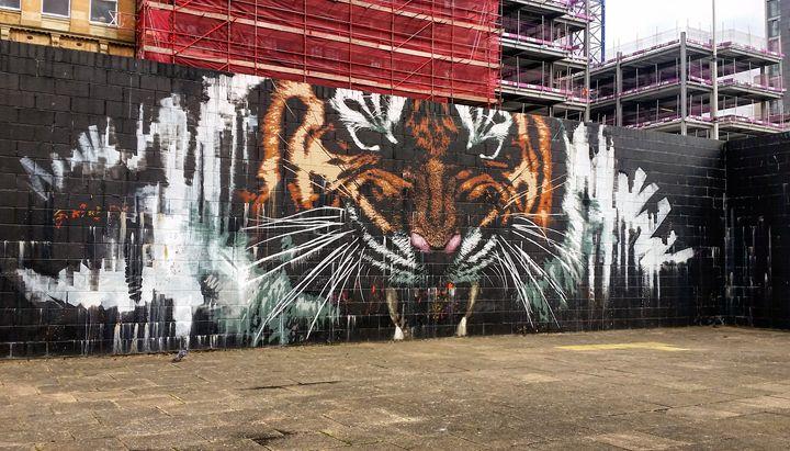 Tiger wall art. - David Travers