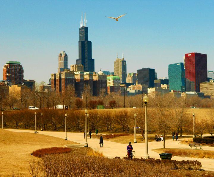 Chicago Park - Eco Life Choice