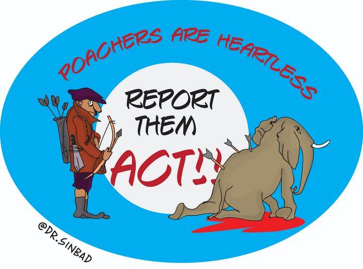 Anti- Poaching - KANGS