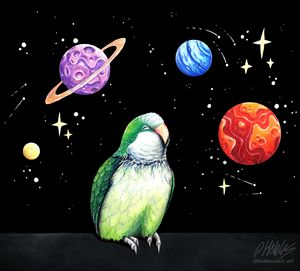 A dreaming parrot