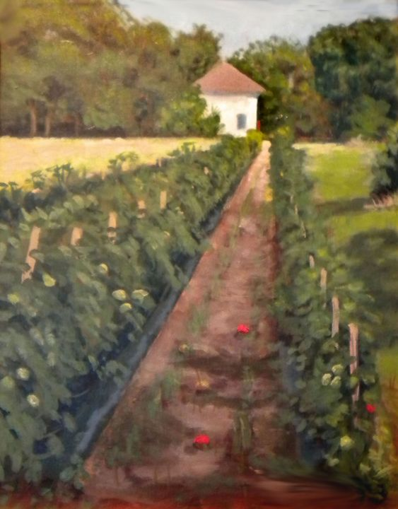 Tomato Field - Christopher Roe