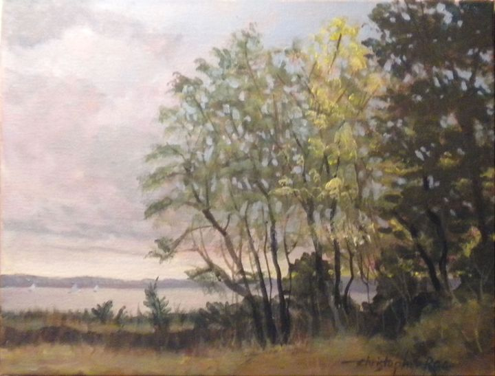 Trees at Colt State Park - Christopher Roe