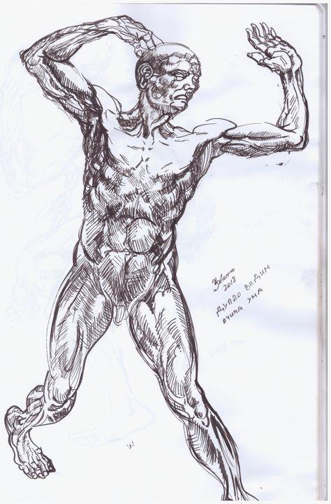 mind anatomy - Zvonko Ciric