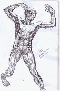 mind anatomy